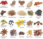 picture of fenugreek  - set of spices with names on a white background - JPG