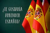 some flags of Spain and the question te gustaria aprender espanol?, do you want to speak Spanish? wr poster