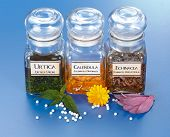 Various Plant Extract In Bottles And Homeopathic Medication