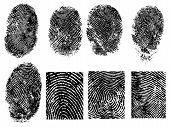 8 Fingerprints