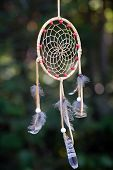 foto of dreamcatcher  - A picture of a dreamcatcher taken outside in a forest - JPG