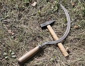 picture of hammer sickle  - Sickle and hammer  - JPG