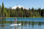 stock photo of stand up  - stand up paddle boarder on a lake - JPG