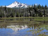a snow-capped peak is reflected in a wet meadow
