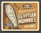 Egyptian Mummies Exhibition In Museum, Ancient Egypt History. Vector Cat Deity And Exhibits Of Decea poster
