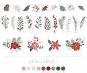 Botanical Christmas, Xmas Elements, Winter Flowers, Leaves, Birds And Pinecones Isolated On White Ba poster
