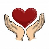 Hands And Heart Symbol Blood Donation Sketch Engraving Vector Illustration. Tee Shirt Apparel Print  poster