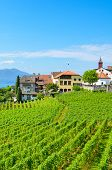 Beautiful Wine-growing Village Rivaz In Lavaux Wine Region, Switzerland. Lake Geneva And Swiss Alps  poster