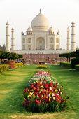 Taj Mahal in sunset light, Agra, Uttar Pradesh, India