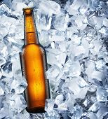 pic of tumbler  - Bottle of beer is in ice - JPG