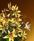 picture of asiatic lily  - a bouquet of lilies in yellow and white colors - JPG