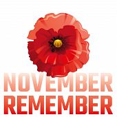 Vector Illustration Eps10, Isolated Background. Realistic Red Poppy Flower Symbol, 3d Remembrance Da poster