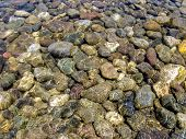 Clear Water Of River Under Sunlight. River Stones In The Clear River Water. Background Of River Colo poster