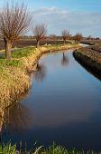 Winding Ditch In A Dutch Polder Landscape