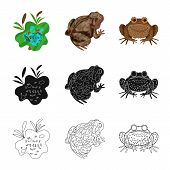 Isolated Object Of Wildlife And Bog Sign. Collection Of Wildlife And Reptile Stock Symbol For Web. poster