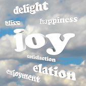 The word Joy and many related words and terms in 3d letters against a cloudy blue sky, including enj