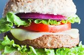 foto of baps  - Close up of a veggie burger  - JPG