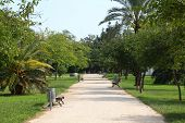 Turia Gardens In Valencia, Spain