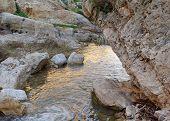 Small mountain creek at sunset