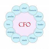 Cfo Circular Word Concept