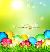 picture of easter decoration  - Vector painted Easter eggs lying in the grass against the sky and the bright rays of the sun - JPG