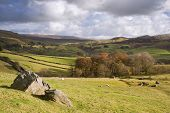 View Of Wharfe Dale From Norber Erratics In Yorkshire Dales National Park