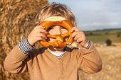 Cute Toddler Eating German Pretzel On Goden Hay Field