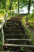 Alte Holztreppe im Park