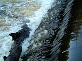 Weir On River Kelvin