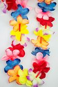 Colored Hawaii lei
