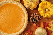 image of pumpkin pie  - Artistic photo of sweet potato pie or pumpkin pie with autumn leaves and colorful gourds - JPG