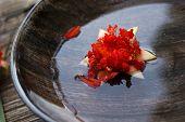 Balmy flower floating in water