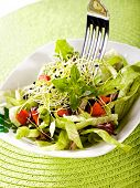 fresh salad with fork and green cover