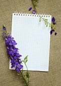 Delphinium On A Diary