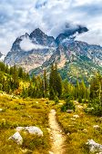 Hiking Trail In The Cascade Canyon - Grand Teton National Park