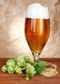 picture of hop-plant  - Glass of beer and hops - JPG