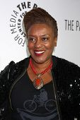 LOS ANGELES - OCT 16:  CCH Pounder at the 2013 Paley Center For Media Benefit Gala at 21st Century Fox Studios Lot on October 16, 2013 in Century City, CA