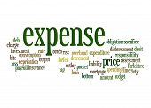Expense Word Cloud