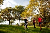 picture of shotokan  - A group of young adults training martial arts in the park - JPG