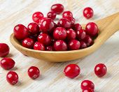 Cranberries In A  Wooden Spoon