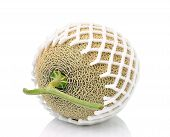 Cantaloupe In Net Bag, Isolated On White Background.