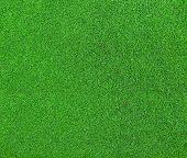 picture of greenery  - Beautiful Green grass  texture for background texture - JPG