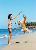Young Woman Playing with her Adorable Golden Retriever at the Beach, Happy Dog Jumping up into the Air.