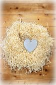 Lone Wooden Heart In A Love Nest