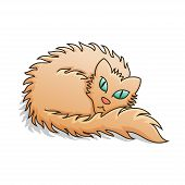Red Fluffy Cat Vector Illustration