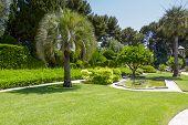 Greenery Of Villa Ephrussi De Rothschild