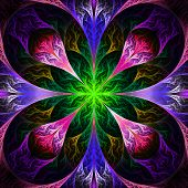 Beautiful Fractal Flower In Black, Purple And Green. Computer Generated Graphics.