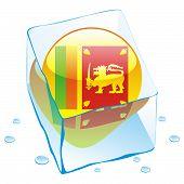 vector illustration of sri lanka button flag frozen in ice cube
