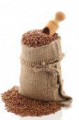Grade Brown Rice Grain