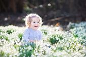 Beautiful curly laughing toddler girl playing with first spring flowers in spring sunny park